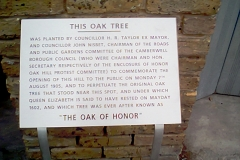 Southwark Honor Oak 02